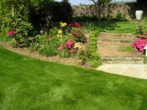 Entretien du jardin service la personne for Service entretien jardin