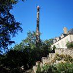 ELAGAGE DU MOULIN TILLIERES - Démontage d'arbre